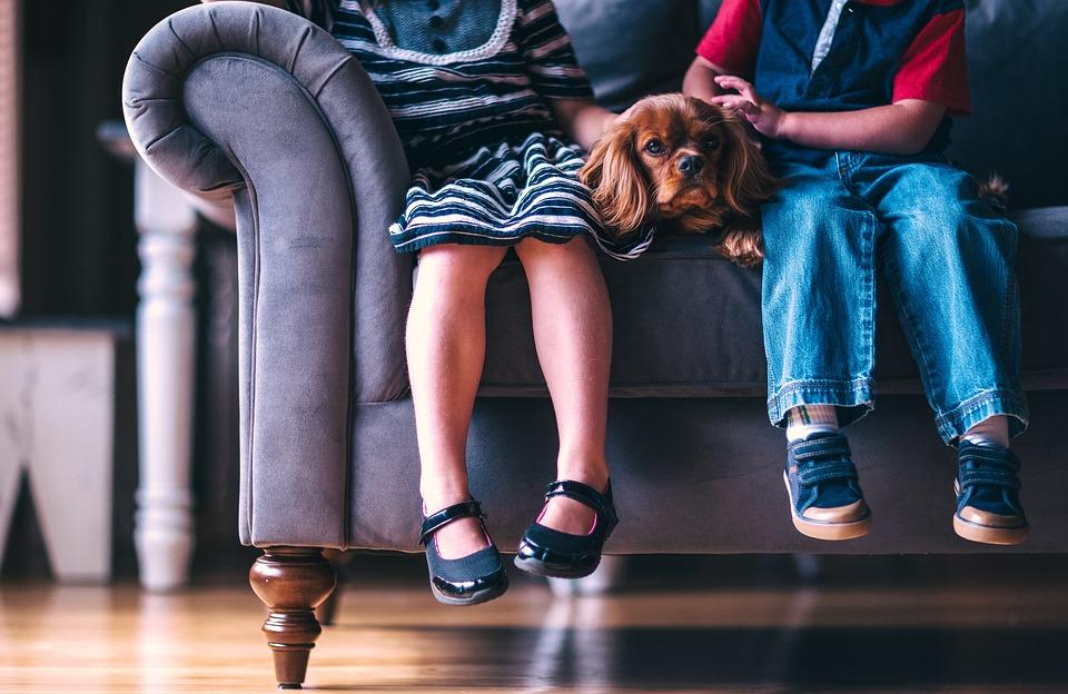 Tipos de guarda y custodia: ¿cuál es la mejor para los hijos?